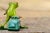 Konfor Alanı Nedir Ve Bu Tuzaktan Kurtulmak İçin Yapılması Gerekenler