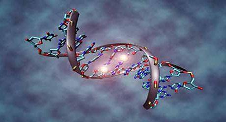Tümör Protein p53 Nedir?