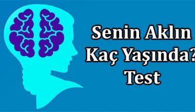 Aklının Kaç Yaşında Olduğunu Bu Testle Öğren!